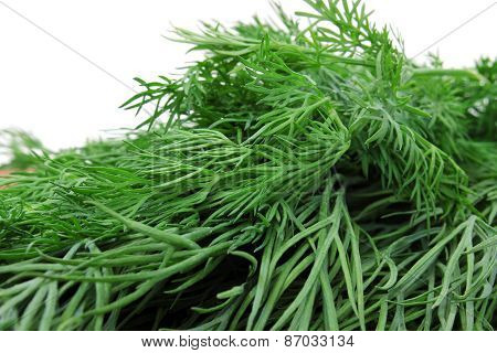 Volume Beam Sprigs Of Dill