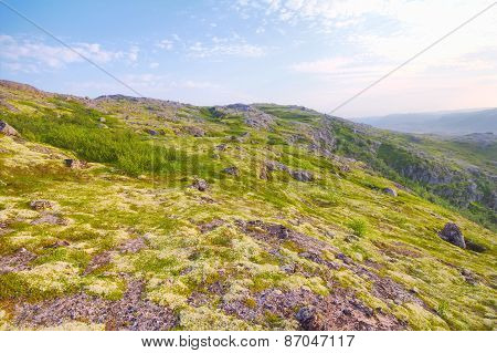 Polar Hills Scandinavian Tundra In Summer