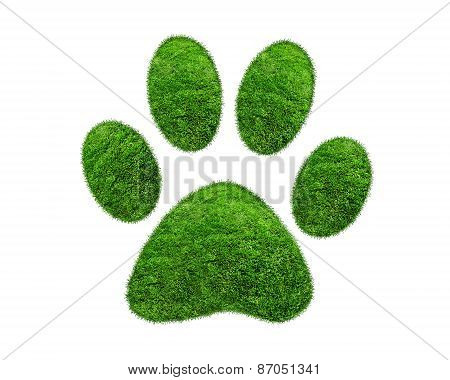 Green Grass Animal Footprint On White Background