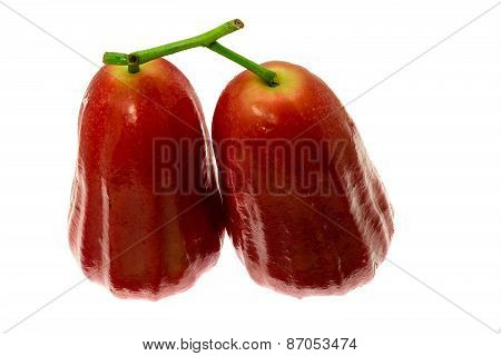 Bell fruit or rose apple