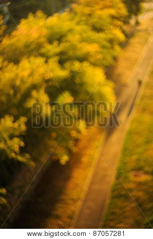 Blurry Sunset Background, Trees And Road With Shadow Figure