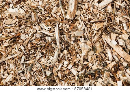 Wood Chips From Pruned Branches From Close