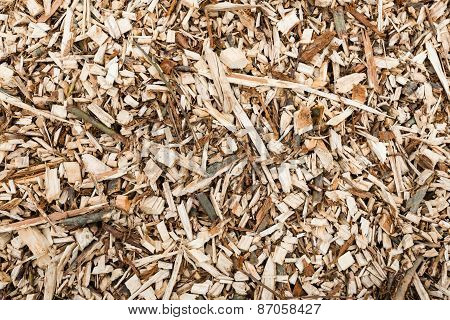 Shredded Wood From Pruned Branches From Close