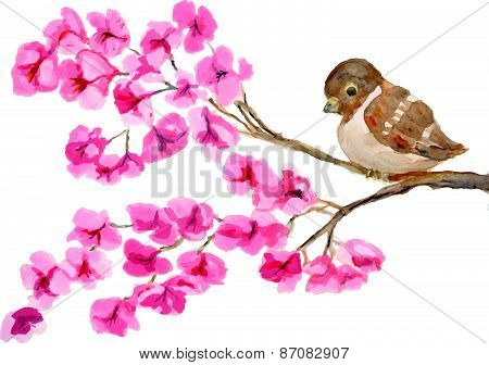 Vector watercolor painting of bird on branch with pink flowers