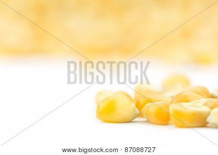 Close Up Yellow Grain Corn