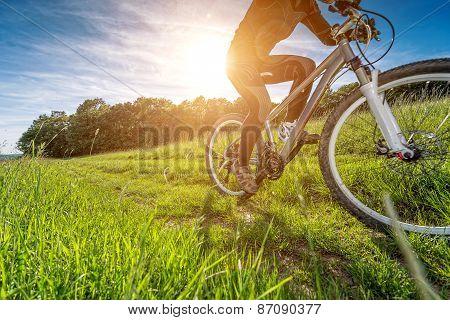 Sport Bike, Cycling In The Beautiful Meadow, Detail Photo,