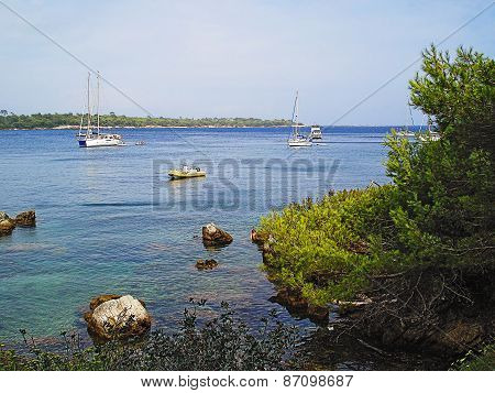 Iles de Le?ins boats and pines