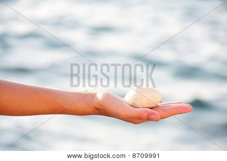 Seastone In Palm Of Hand