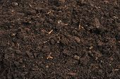 picture of rich soil  - close - JPG