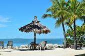 stock photo of gazebo  - Gazebo on Florida Beach with Caribbean sea in background - JPG