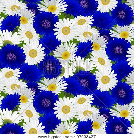 Seamless pattern with flowers camomile, cornflowers