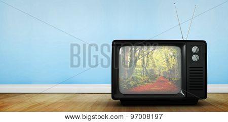 Retro tv against peaceful autumn scene in forest
