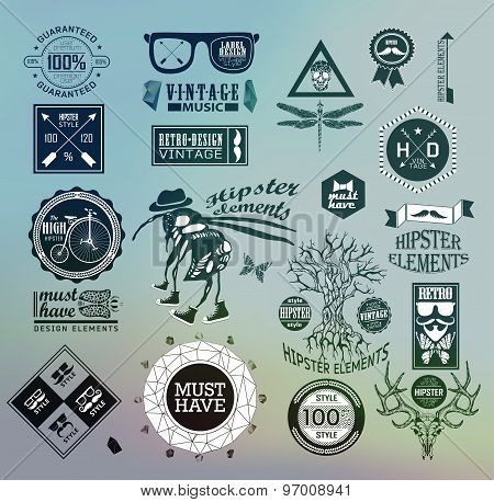 hipster label, icon, elements