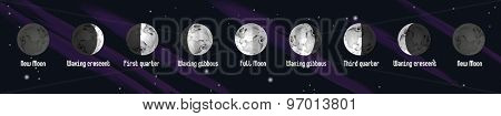 Phases of Moon, vector illustration