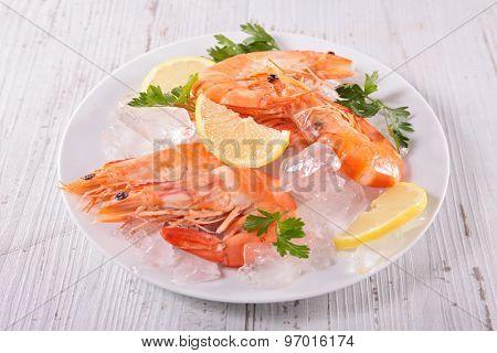 fresh shrimp on ice cubes