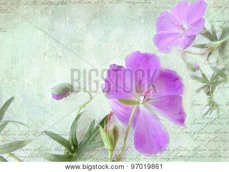 Grungy Floral Retro Background. Postcard Template.