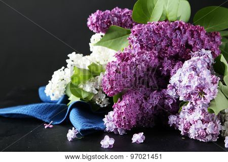 Beautiful Lilac On Black Background