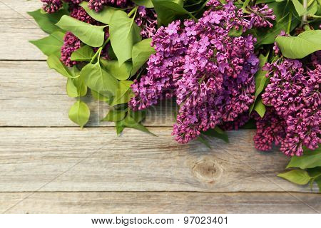 Purple Lilac Flowers On The Grey Wooden Background