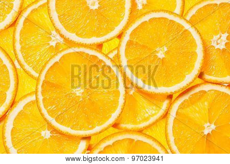Colorful orange citrus fruit slices background backlit