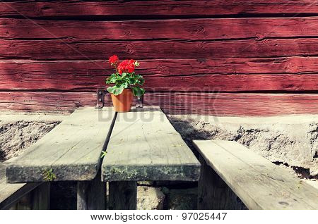 Red Flower In A Pot Standing On A Wooden Table Outdoors
