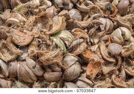 Pile Of Coconut Husk