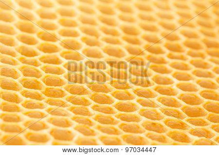 Newly Drawn Honeycomb
