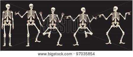 Vector Illustration Dancing skeletons