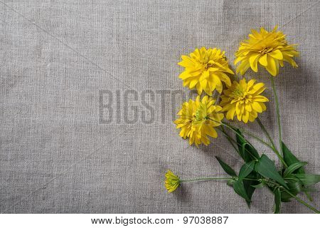 yellow flowers on linen background