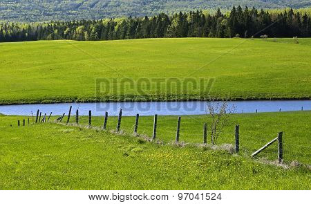 Green Fields Pond Fence