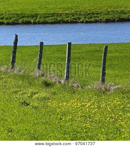 Farm Fence Pond