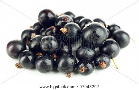 Ripe black currant isolated on white