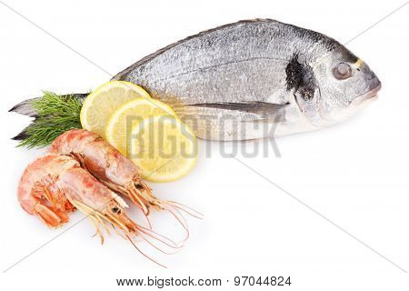 Fresh dorado fish with shrimps, dill and lemon isolated on white