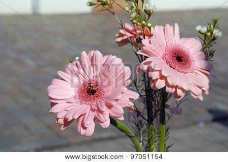 Pink Flowers Bouque