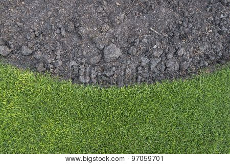Green Grass With Soil As Nature Background