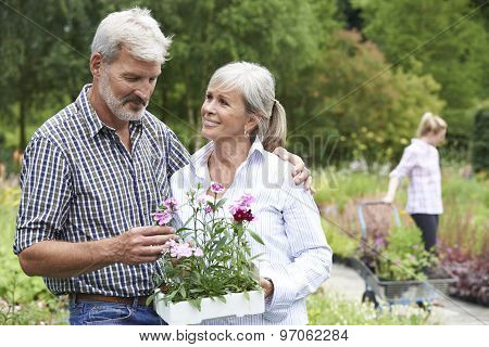 Mature Couple Choosing Plants At Garden Center