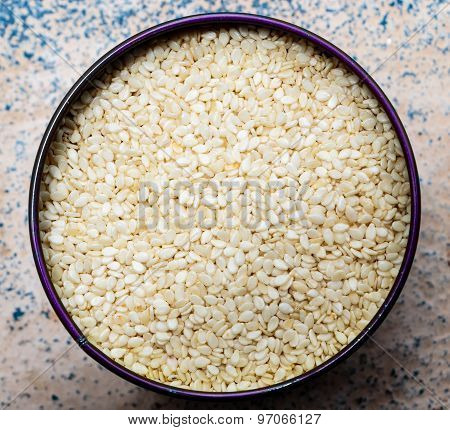 White Variety Sesame Seeds kept in a storage container on a plain background
