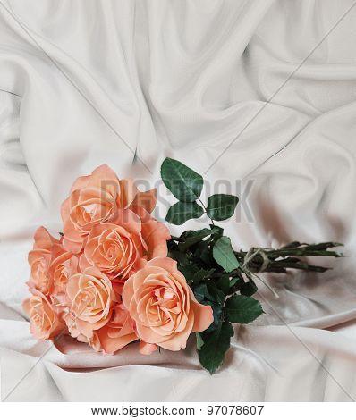 Roses On Satin Fabric