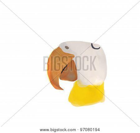 beak illustration