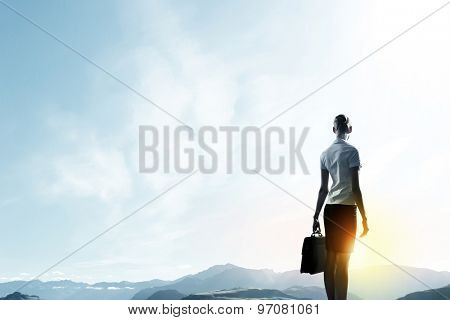 Rear view of businesswoman looking at sunset