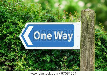 Direction Arrow, Sign To One Way In Blue Color