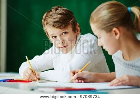 Handsome boy looking at camera at lesson with classmate near by
