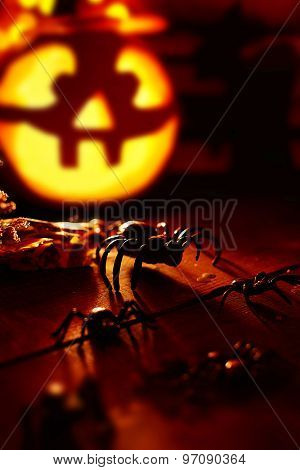 Halloween spiders on background of jack-o-lantern