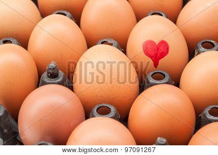 Eggs In An Egg Holder
