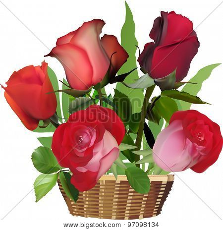 illustration with red roses in basket isolated on white background