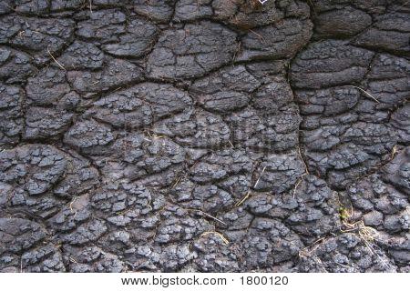 Cracked Peat Background