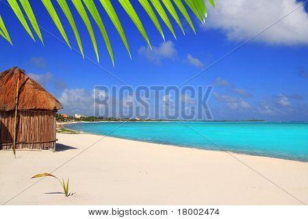 Caribbean palapa front tropical beach Mayan Riviera Mexico