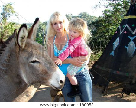 Meeting The Donkey
