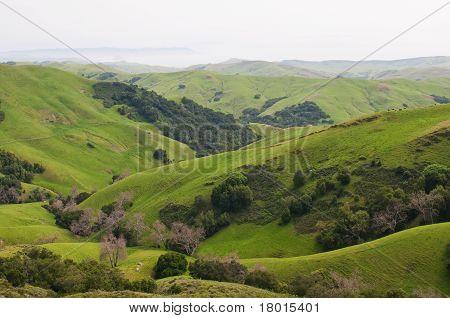 Hügeln