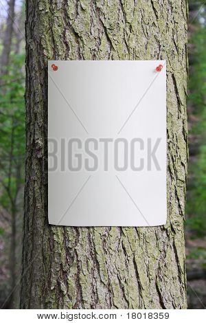 Tree Trunk with a Poster Pinned to it