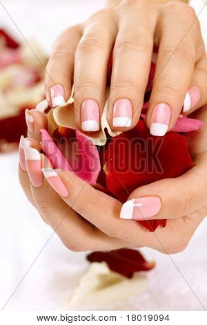 Hands With Rose Petals